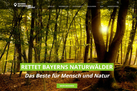 Website Naturwald
