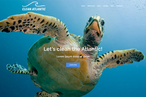 Website Clean Atlantic