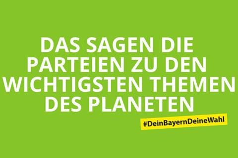 Greenpeace Wahlkompass